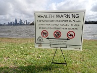 Picture of algal warning sign on river foreshore