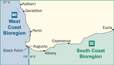 illustration map of west coast and south coast bioregion