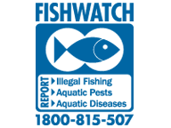 The FishWatch logo, which asks people to call 1800 815 507 if they have seen a fish kill