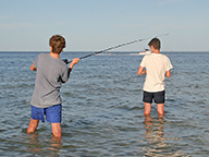 Two recreational fishers casting with rods from a beach
