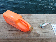 Plastic drum float with squid jig attached