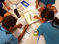 Students working on marine research activities