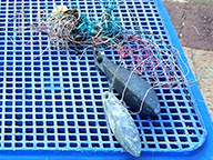 An example of snagged fishing gear retrieved from a lobster pot