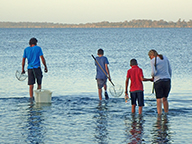 A mother, father and two young boys crabbing in the Peel-Harvey