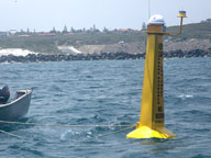 Satellite-linked shark detection receiver