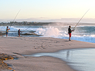 Fishers casting rods from a beach into the surf.