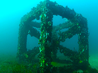 One of the underwater modules forming Bunbury's artificial reef