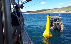 A VR4 buoy loaded into the water of Gracetown