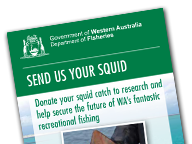 Send us your squid flyer