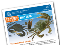 endangered guide paper research species teacher This lesson is part of a two-part series on endangered species  research in the  area of earth-shaping processes reveals the following misconceptions that.